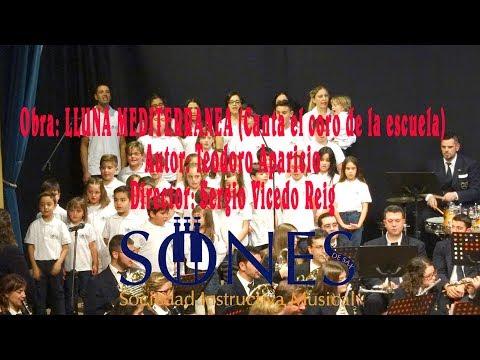 S.I.M. SONES DE