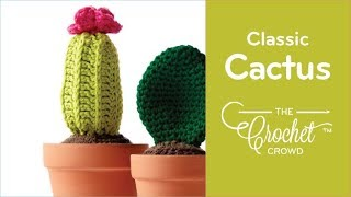 How to Crochet a🌵 Cactus: Classic Style