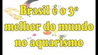 Brasil é o 3º melhor  do mundo no aquarismo!!!