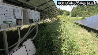 太陽光発電 草刈りで一番気を付けないといけないこと【後編】