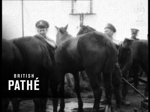 Trouble In Ireland (1910-1929)