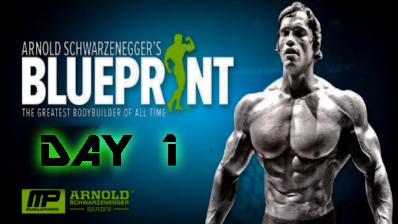 Arnolds blueprint cut day 1 chest and back youtube malvernweather