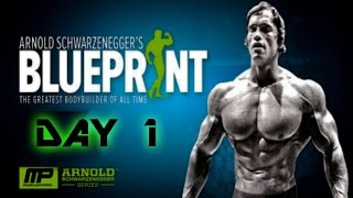Arnold's Blueprint Cut Day 1 Chest and Back