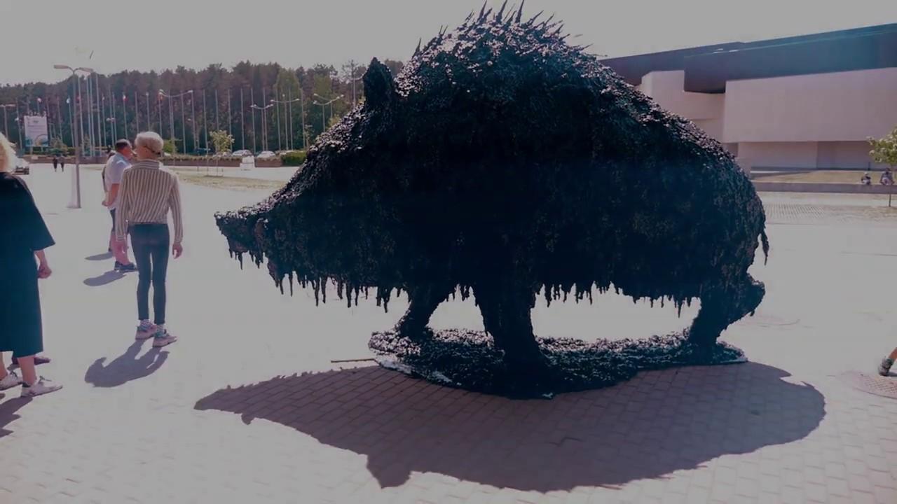 Tva Fair 2020.Artvilnius 20 International Contemporary Art Fair