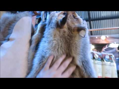 Man Behind The Mic Daily Vlog Ep 39 Exploring Hahndorf South Australia