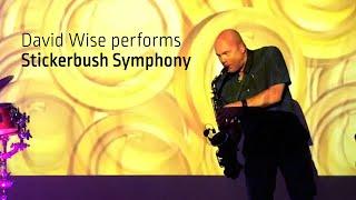 Stickerbush Symphony live with David Wise