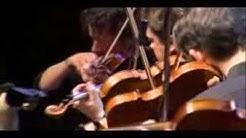 Jethro Tull  Ian Anderson  Aqualung  Classical