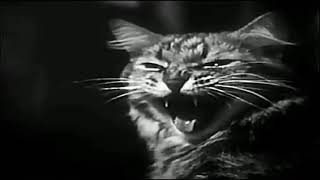 The Cure - The Lovecats  (Extended Version)