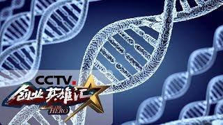 《创业英雄汇》 20190823| CCTV财经
