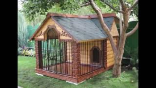 Оригинальные домики для собак