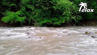 Звуки Природы  -  Шум Реки  -  Антистресс и Релаксация