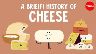 A brie(f) history of cheese  Paul Kindstedt
