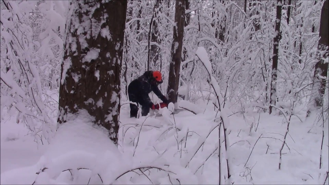 Farmertec Holzfforma G372xp & G660 Continued One Cold & Windy Day For Field  Testing Chainsaws!