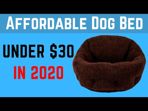✅-top-5:-best-dog-beds-on-amazon-under-30-dollars|-best-price-dog-beds-2020.-(affordable).
