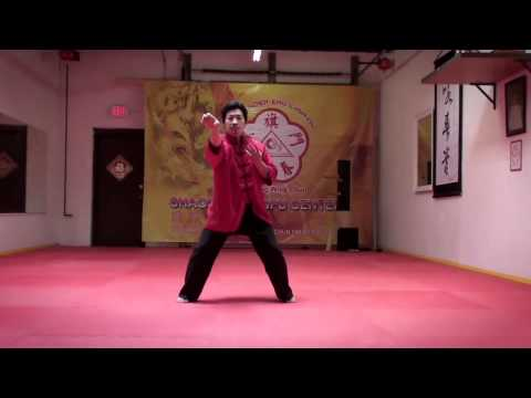 Black Flag Wing Chun Demonstration - Fa Jing Impulse Power [Hoat Keng - Faat Ging]