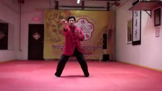 Video Black Flag Wing Chun Demonstration - Fa Jing Impulse Power [Hoat Keng - Faat Ging] download MP3, 3GP, MP4, WEBM, AVI, FLV November 2017