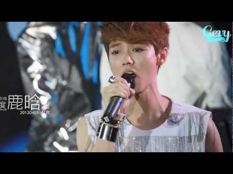 [Vietsub] I Choose To Love You, Luhan