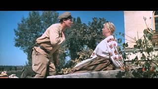 """Вы напоминаете мне мою чернявую, мою любимую, мою безотказную... гаубицу!  """"Свадьба в Малиновке"""""""