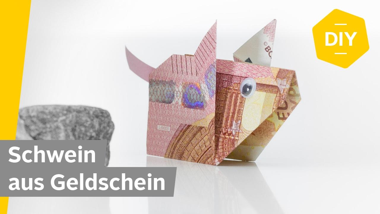 Geldscheine Falten Schwein Glucksschwein Fur Kreative