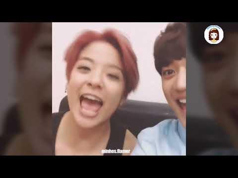 Minho & Amber Llama Song Compilation