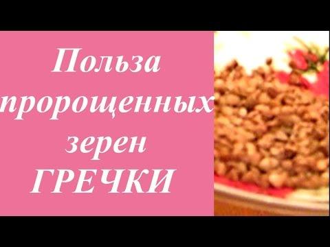 О пользе пророщенного зерна гречки для здоровья. Здоровое питание. Домашний Очаг с Мариной