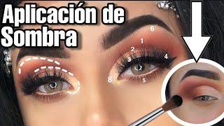 Ojos principiantes para de maquillaje