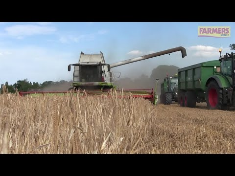 Harvest 2017: Euston Estate barley beats expectations after dry season