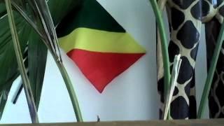 Le Congo francafrique et la chronique d