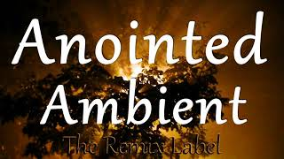 Anointed Ambient Vocal Chillout Music