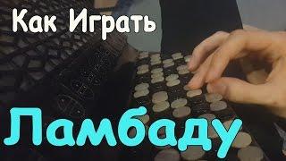 Как Играть ЛАМБАДУ на Баяне (ВидеоУрок)/ Уроки Игры на Баяне/ How to Play LAMBADA