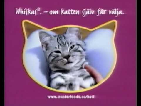 K Cat Food Commerical