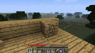 Minecraft Let's Play Ep.10- Home Improvement