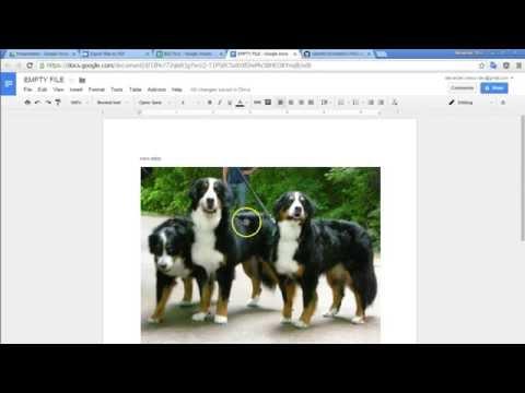 Export To PDF Via Google Apps Script