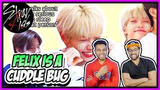 STRAY KIDS - FELIX IS A CUDDLE BUG (PARTS 1 \u0026 2) REACTION | HAPPY BIRTHDAY FELIX!