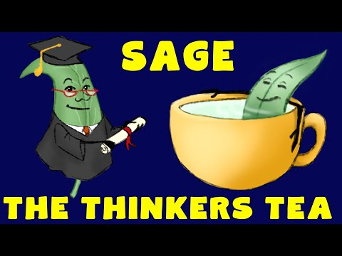 BENEFITS & USES of SAGE TEA Nutritional health facts about sage
