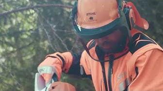 Yhteistyössä: Menestystä Metsästä
