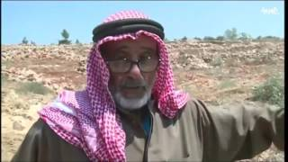 اسرائيل تجرف أكثر من 500 شجرة زيتون في قرية سكاكا شمال الضفة المحتلة