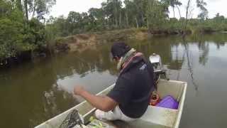 Casting Ikan Bulan (Tarpon)
