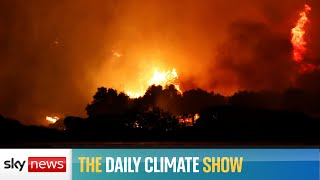 Daily Climate Show: Turkey on fire, and reforestation not the only answer