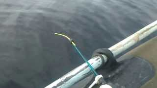 рыбалка в карелии(осенью в Карелии очень красиво и богатые природные ресурсы ссылка на видео-http://youtu.be/QKu2A9QhZr4., 2014-02-02T23:21:35.000Z)