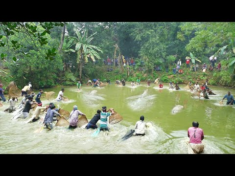 Best Fishing System। Amazing Fish Catching By Hand With Primitive Fish Trap