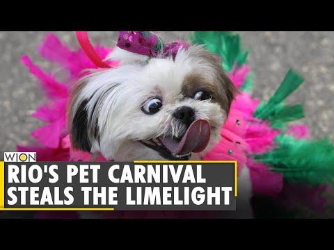 Brazil: Carnival amid the Coronavirus pandemic | COVID-19 Update | English World News | WION