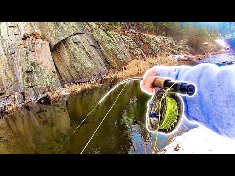 Fly Fishing The BLACK HILLS For Native Creek TROUT!--(My FIRST Time!)