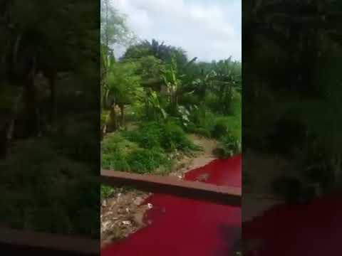 Rio vira vermelho