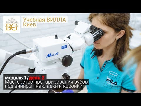 Виниры: виды, цена в Новосибирске, отзывы, стоимость