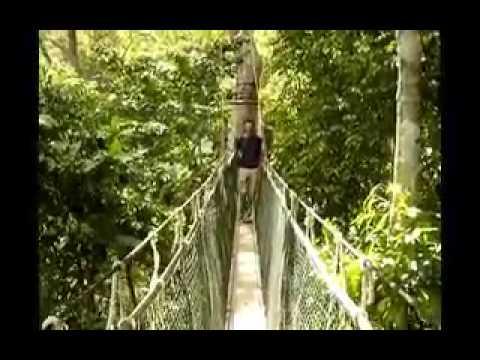 Canopy Walk Sebas.avi
