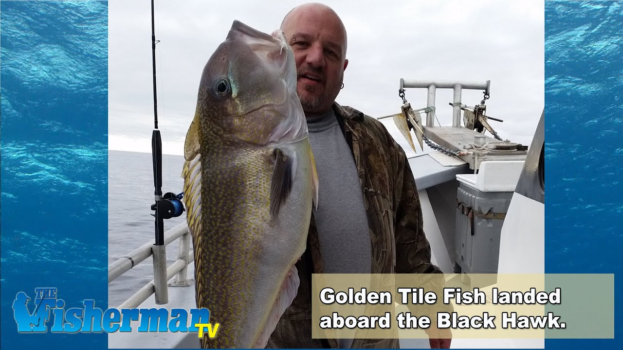 December 22 2014 new england fishing report with toby for Ct saltwater fishing report
