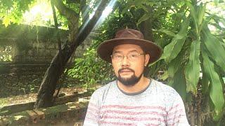 2019Sep09 - Rạng Đông gian dối/Cựu GĐ sở TC bỏ trốn/ 8 khoản PH không phải đóng tiền ...