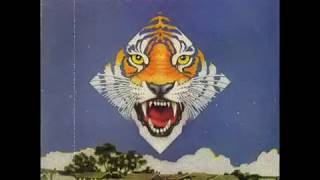 Ted Nugent & Amboy Dukes - Call of the Wild (1974, Vinyl Rip)