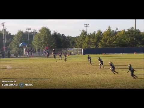 2015 Justin Johnson Football Highlights